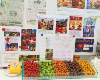 須藤物産トマトハウス