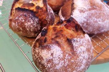 自家製酵母のドライトマトとアーモンドの田舎パン