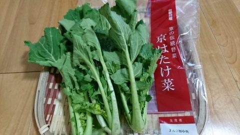 初午には栄養たっぷりの伝統野菜「畑菜」料理を