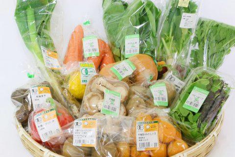 新商品登場!「有機野菜セット」