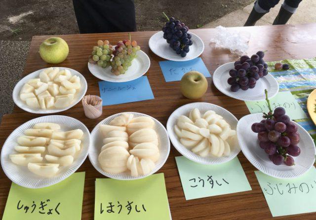 梨ブドウ食べ比べ