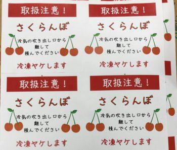 ふるさと納税_さくらんぼ