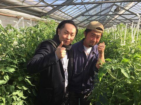 DJコウの産地視察レポート! JAたのふじトマト生産販売組合