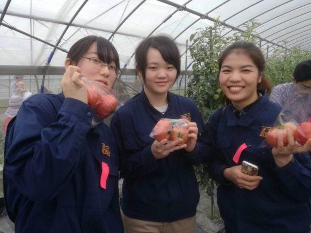 「野菜くらぶ収穫祭」美味しい野菜に笑顔があふれました!