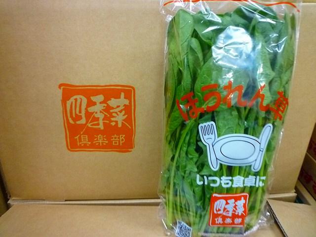 「四季菜くらぶ」ほうれん草の納品要望をいただきました