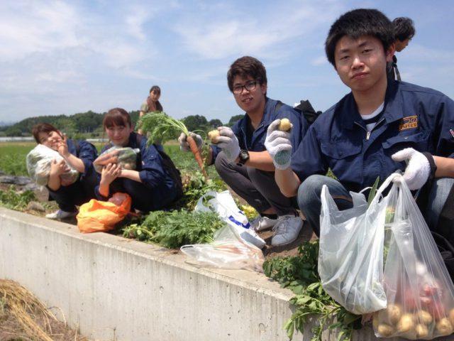 「野菜くらぶ収穫祭」今年も参加しました!