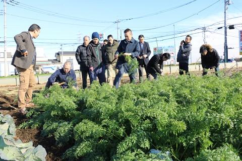 【所沢・東京野菜】「種・畑とテーブルをつなぐ」取り組み