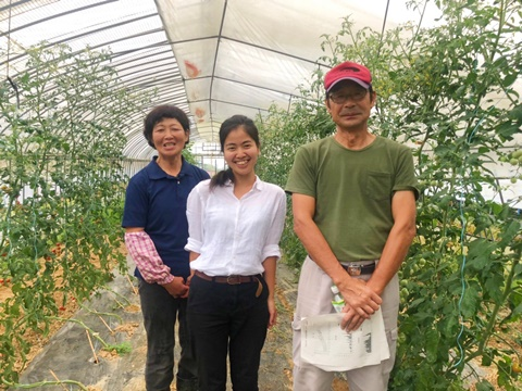 福島県安達地区のミニトマト産地へ