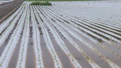 【第四報】令和2年7月豪雨による影響