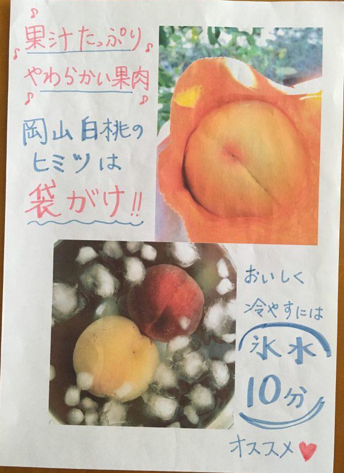 岡山白桃PR
