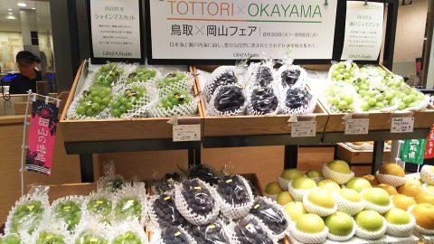 岡山県 ブドウ マスカット ピオーネ 試食販売