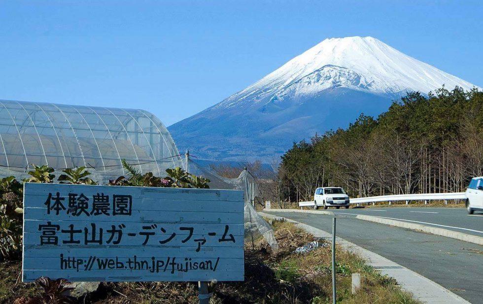 絶景!「富士山ガーデンファーム」