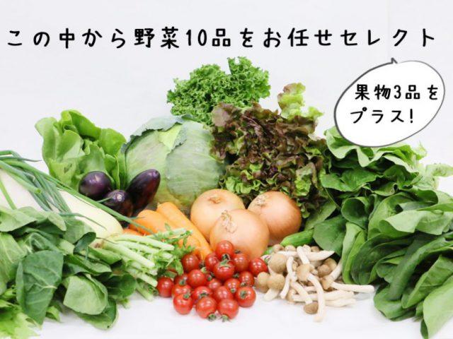 農家さん応援!野菜セット緊急特売