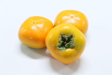 まつの果物ニュース│渋抜き柿・甘柿