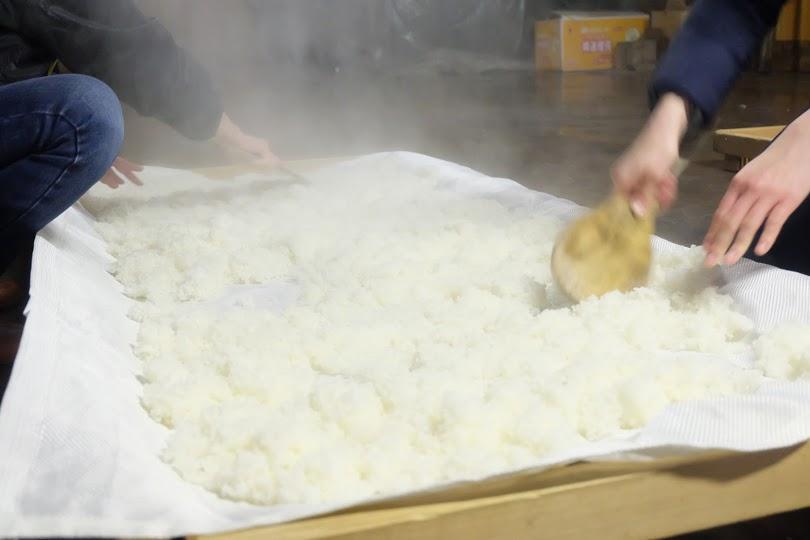 米作りからの酒造り!僕らの酒造りプロジェクト【酒造り編】