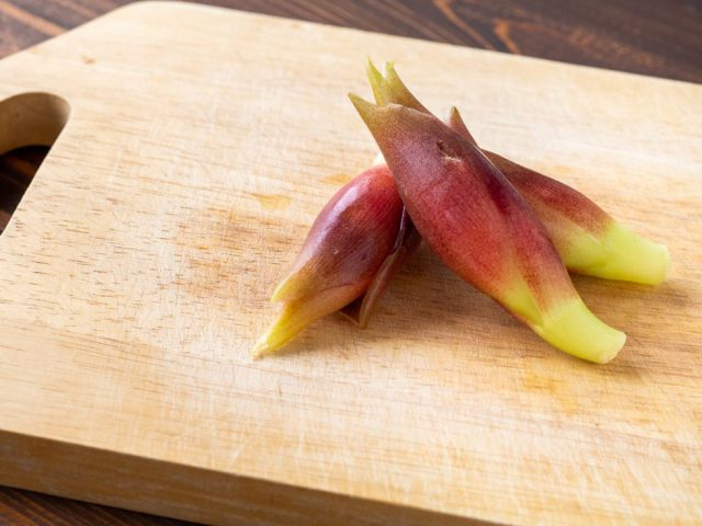 NO.15 日本の香り秋みょうがをたっぷり使う方法