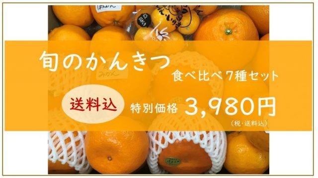 【新発売】柑橘食べ比べセット|まつのオンラインショップ