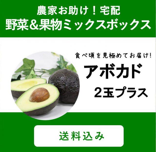 【新発売】アボカドセットが野菜ボックスに登場!