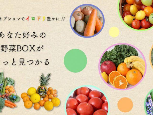 【リニューアルオープン】送料無料&新オプションセット まつのオンラインショップ